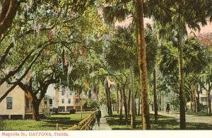 Magnolia Street, Daytona, Florida