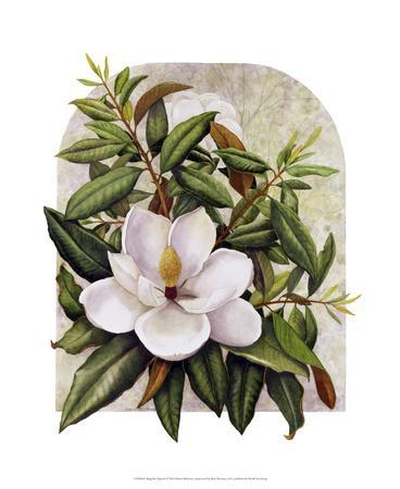 https://imgc.allpostersimages.com/img/posters/magnolia-vignette_u-L-F8U92U0.jpg?p=0