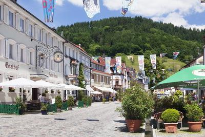 https://imgc.allpostersimages.com/img/posters/main-road-wolfach-kinzigtal-valley-black-forest-baden-wurttemberg-germany-europe_u-L-PQ8N6N0.jpg?p=0