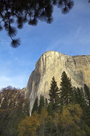 https://imgc.allpostersimages.com/img/posters/majestic-sheer-rocky-wall-of-el-capitan-yosemite-national-park-california_u-L-PZRHSO0.jpg?p=0