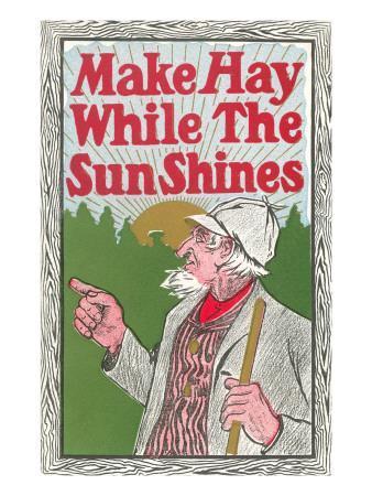 https://imgc.allpostersimages.com/img/posters/make-hay-while-the-sun-shines_u-L-PE2W0D0.jpg?p=0