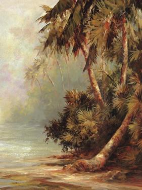 Hidden Cove by Malarz