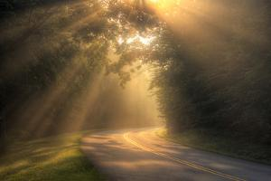 Morning Rays on Rural Road by Malcolm MacGregor