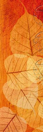 Falling Leaves II by Malcolm Sanders