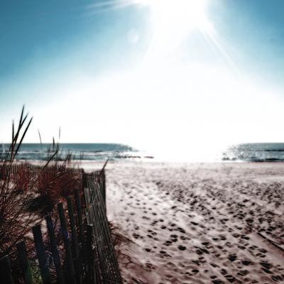 Ocean Adventure by Malcolm Sanders