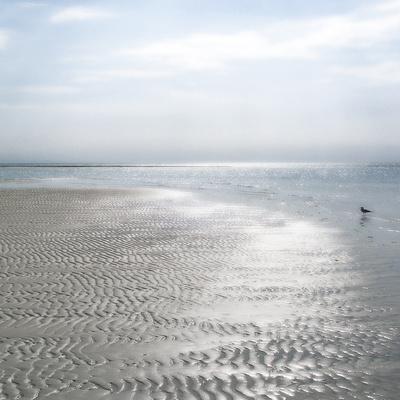 Seascape - Solo
