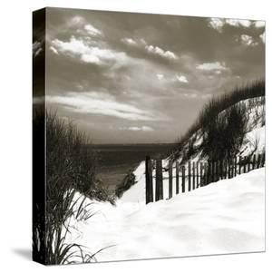 The Secret Path by Malcolm Sanders