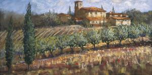 Tuscan Olives by Malcolm Surridge