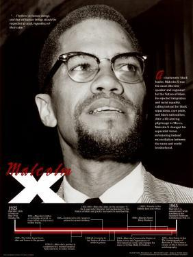 Affordable Malcolm X Posters For Sale At AllPosters