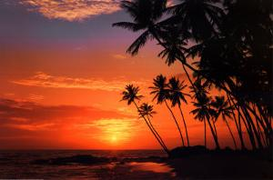 Maldive Evening