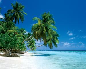 Maldive - Morning