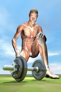 Male Musculature Looking at a Dumbbell on the Grass
