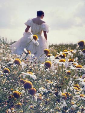 A Woman in a White Victorian Dress, Walking Among Camomile Flowers on a Meadow on a Sunny Day by Malgorzata Maj