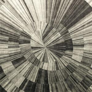 Silver Swirl by Mali Nave