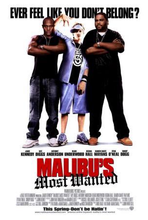 https://imgc.allpostersimages.com/img/posters/malibu-s-most-wanted_u-L-F4S5QL0.jpg?artPerspective=n