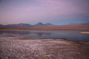 Cejar, a Series of Three Ponds Located in the Middle of the Salt Lake by Mallorie Ostrowitz