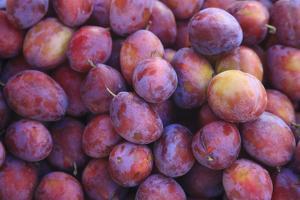 Nectarines at Local Open Air Market in Caldas Da Rainha, Portugal by Mallorie Ostrowitz
