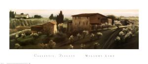 Calcinaia, Tuscany by Mallory Lake