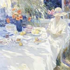 Summer Read by Malva
