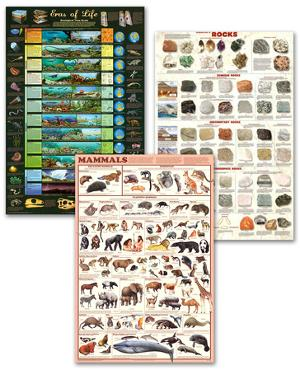 Mammals and Geology Poster Set