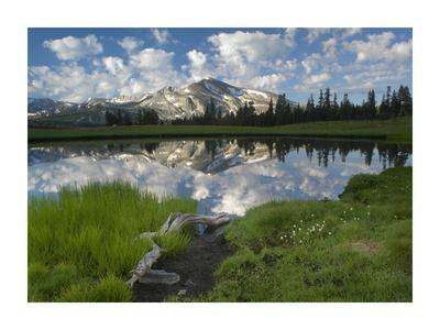 https://imgc.allpostersimages.com/img/posters/mammoth-peak-and-scattered-clouds-reflected-in-lake-yosemite-national-park-california_u-L-F7IBX50.jpg?p=0