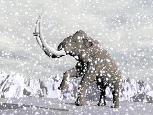 Mammoth Walking Through a Blizzard on Mountain