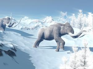 Mammoths Walking Slowly on the Snowy Mountain Against the Wind