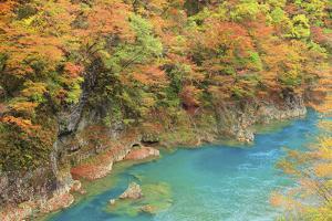 River in Dakigaeri Valley, Akita Prefecture by Mamoru Muto/Aflo