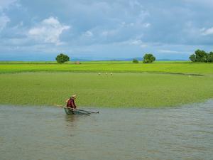 Man fishing at edge of Kaladan River, Rakhine State, Myanmar