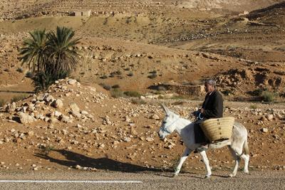 https://imgc.allpostersimages.com/img/posters/man-traveling-on-a-donkey-douirette-tataouine-tunisia_u-L-Q1GYKG80.jpg?artPerspective=n
