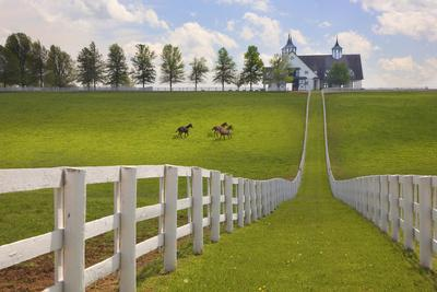 https://imgc.allpostersimages.com/img/posters/manchester-farm-kentucky-08_u-L-Q1AHKUZ0.jpg?p=0