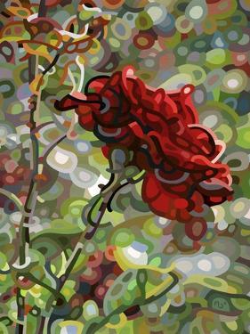 Last Rose of Summer by Mandy Budan