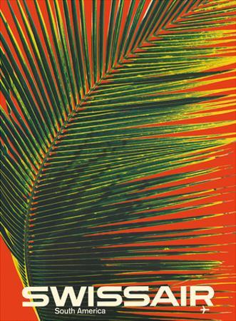 South America - SwissAir - Palm Frond by Manfred Bingler