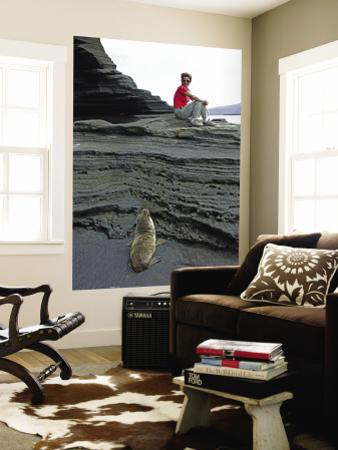 Sea Lion Cub Watching Visitor on Eroded Lava Rocks at Puerto Egas