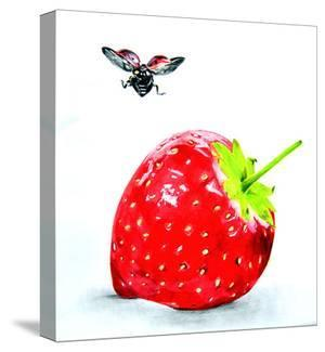 Fly And Strawberry by Manuela Lai
