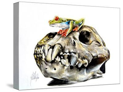 Frog On Skull