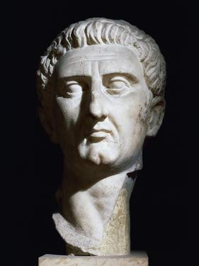 Marble Bust of Emperor Nerva Uncovered in Tivoli, Rome, Italy, 96-98 AD