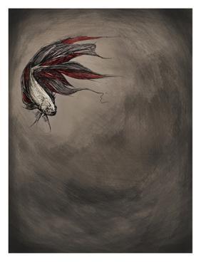 Samsara by Marc Allante