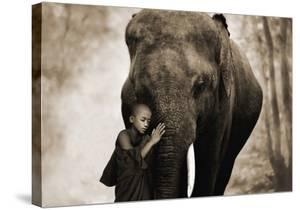 Healing Embrace by Marc Moreau
