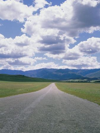 A Country Road and Cumulus Clouds in the Cuyama Valley by Marc Moritsch