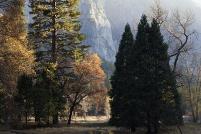 A Scenic Autumn Landscape in the Yosemite Valley by Marc Moritsch