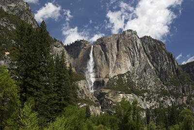 A Scenic View of Yosemite Falls by Marc Moritsch