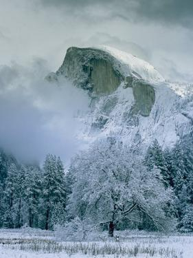 A Winter View of Half Dome by Marc Moritsch