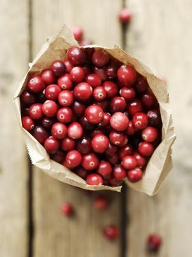 Cranberries in Paper Bag (Overhead View) by Marc O. Finley
