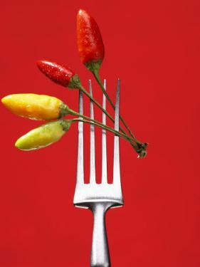 Four Chili Peppers on a Fork by Marc O. Finley