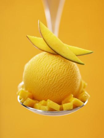 Mango Sorbet with Fresh Fruit on a Spoon by Marc O. Finley