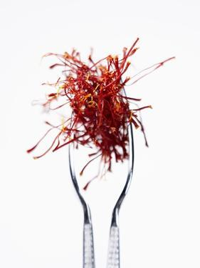Saffron Threads in Tongs by Marc O. Finley