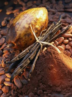 Still Life with Cocoa and Vanilla Pods by Marc O. Finley