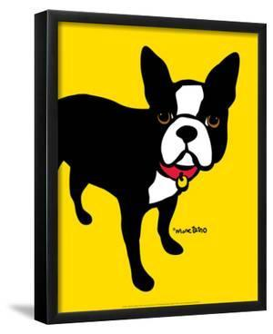 Boston Terrier by Marc Tetro