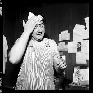 Coluche, 12 February 1975 by Marcel Begoin
